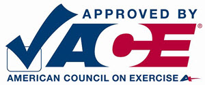 300-ace-approved-logo